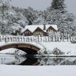 Cabaña en alquiler 3 Ambientes Con Servicios Villa La Angostura 661